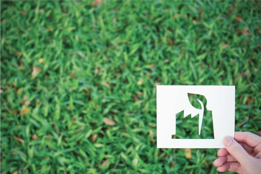 sviluppo_imballaggi_sostenibili_di_mauro_azienda_sostenibile
